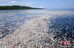 联合国�U全球每年用掉5万亿个塑料袋 不足一成再利用